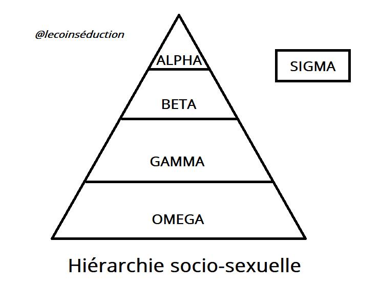 hierarchie male alpha beta gamma oméga sigma